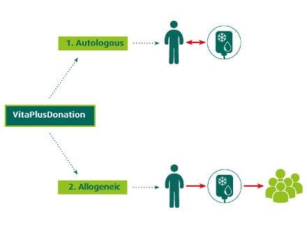 stem-cells-storing-or-donating-vitaplusdonation